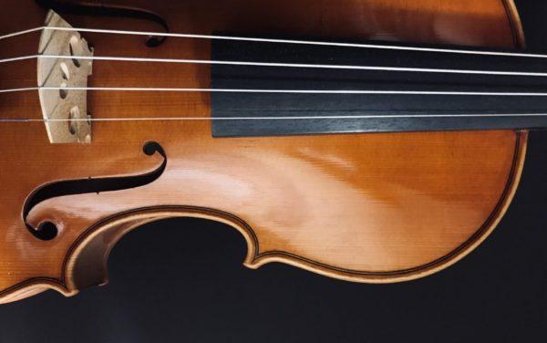 製作したバイオリン